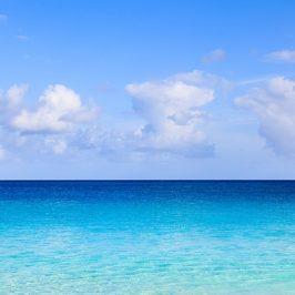 EN BUSCA DE OCEANOS AZULES